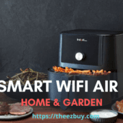 Best Smart Wifi Air Fryer